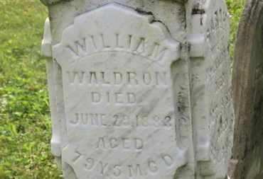 WALDRON, WILLIAM - Delaware County, Ohio | WILLIAM WALDRON - Ohio Gravestone Photos