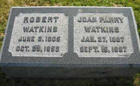 PARRY WATKINS, JOAN - Delaware County, Ohio | JOAN PARRY WATKINS - Ohio Gravestone Photos