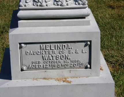 WATSON, L. - Delaware County, Ohio | L. WATSON - Ohio Gravestone Photos