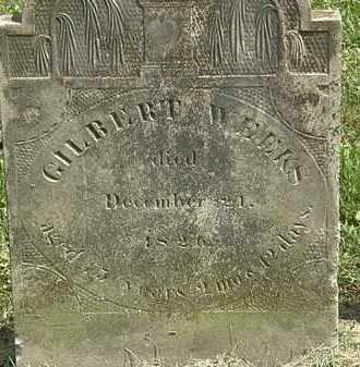 WEEKS, GILBERT - Delaware County, Ohio | GILBERT WEEKS - Ohio Gravestone Photos