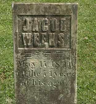WEEKS, JACOB - Delaware County, Ohio | JACOB WEEKS - Ohio Gravestone Photos