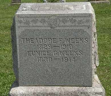 WEEKS, EUNICE - Delaware County, Ohio | EUNICE WEEKS - Ohio Gravestone Photos