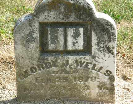 WELLS, GEORGE J. - Delaware County, Ohio | GEORGE J. WELLS - Ohio Gravestone Photos