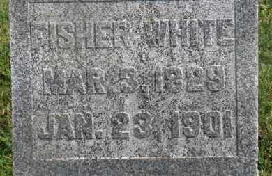 WHITE, FISHER - Delaware County, Ohio | FISHER WHITE - Ohio Gravestone Photos