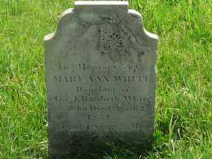 WHITE, MARY ANN - Delaware County, Ohio | MARY ANN WHITE - Ohio Gravestone Photos