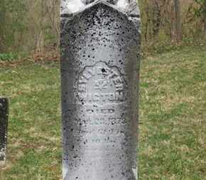 WIGTON, SYLVESTER - Delaware County, Ohio | SYLVESTER WIGTON - Ohio Gravestone Photos