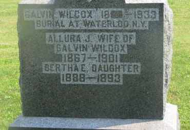 WILCOX, BERTHA E. - Delaware County, Ohio | BERTHA E. WILCOX - Ohio Gravestone Photos