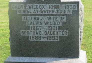 WILCOX, GALVIN - Delaware County, Ohio | GALVIN WILCOX - Ohio Gravestone Photos