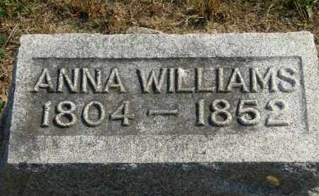 WILLIAMS, ANNA - Delaware County, Ohio | ANNA WILLIAMS - Ohio Gravestone Photos