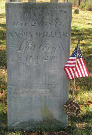 WILLIAMS, ANSON - Delaware County, Ohio | ANSON WILLIAMS - Ohio Gravestone Photos