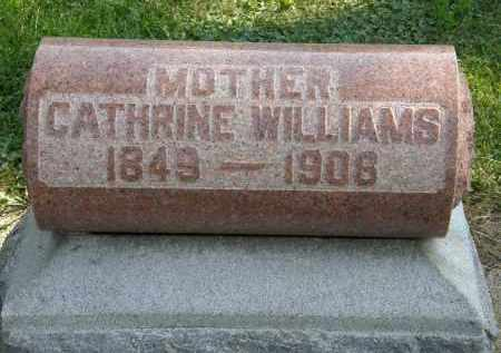 WILLIAMS, CATHRINE - Delaware County, Ohio | CATHRINE WILLIAMS - Ohio Gravestone Photos