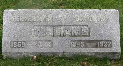 WILLIAMS, PERMELIA E. - Delaware County, Ohio | PERMELIA E. WILLIAMS - Ohio Gravestone Photos