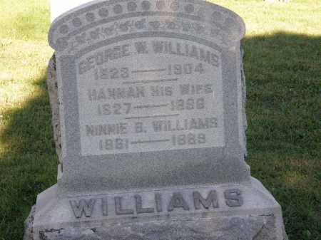 WILLIAMS, HANNAH - Delaware County, Ohio | HANNAH WILLIAMS - Ohio Gravestone Photos