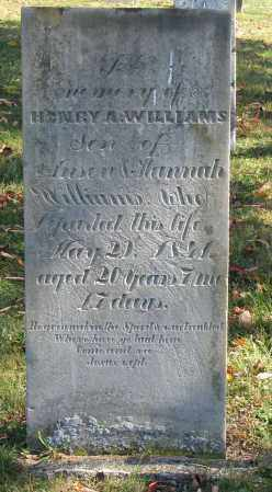 WILLIAMS, HENRY A. - Delaware County, Ohio | HENRY A. WILLIAMS - Ohio Gravestone Photos