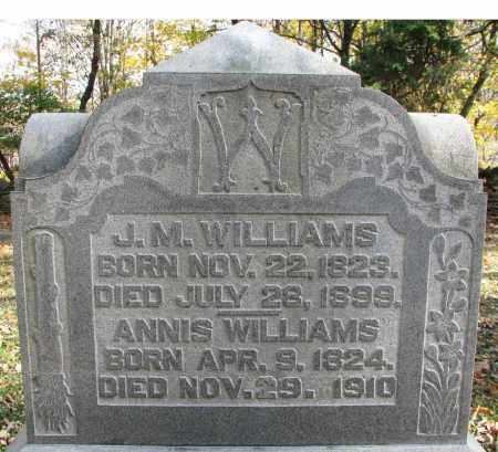WILLIAMS, JOHN M. - Delaware County, Ohio | JOHN M. WILLIAMS - Ohio Gravestone Photos