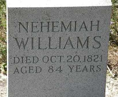 WILLIAMS, NEHEMIAH - Delaware County, Ohio | NEHEMIAH WILLIAMS - Ohio Gravestone Photos