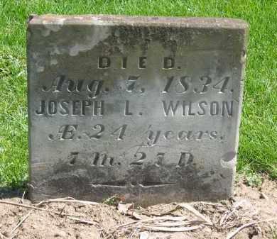 WILSON, JOSEPH L. - Delaware County, Ohio | JOSEPH L. WILSON - Ohio Gravestone Photos