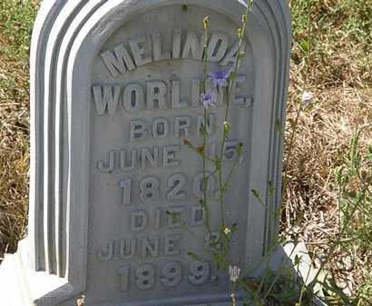 WORLINE, MELINDA - Delaware County, Ohio | MELINDA WORLINE - Ohio Gravestone Photos