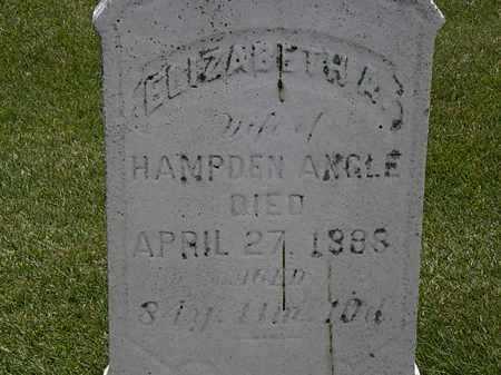 ANGLE, ELIZABETH A. - Erie County, Ohio | ELIZABETH A. ANGLE - Ohio Gravestone Photos