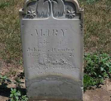 ATWATER, MARY - Erie County, Ohio | MARY ATWATER - Ohio Gravestone Photos