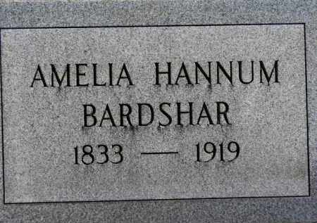 BARDSHAR, AMELIA - Erie County, Ohio | AMELIA BARDSHAR - Ohio Gravestone Photos