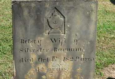 BARNUM, BETSEY - Erie County, Ohio   BETSEY BARNUM - Ohio Gravestone Photos