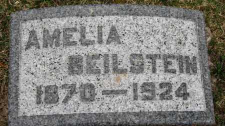 BEILSTEIN, AMELIA - Erie County, Ohio | AMELIA BEILSTEIN - Ohio Gravestone Photos