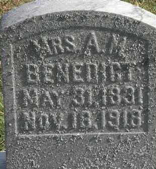 BENEDICT, A.M. - Erie County, Ohio | A.M. BENEDICT - Ohio Gravestone Photos