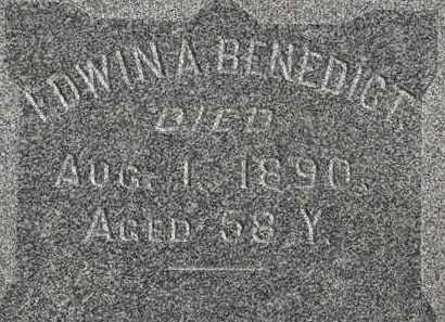 BENEDICT, EDWIN A. - Erie County, Ohio | EDWIN A. BENEDICT - Ohio Gravestone Photos