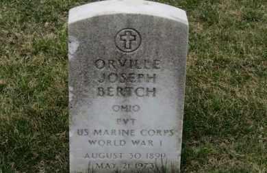 BERTECH, ORVILLE JOSEPH - Erie County, Ohio | ORVILLE JOSEPH BERTECH - Ohio Gravestone Photos
