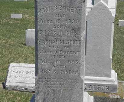 BOGERT, HANNAH - Erie County, Ohio | HANNAH BOGERT - Ohio Gravestone Photos