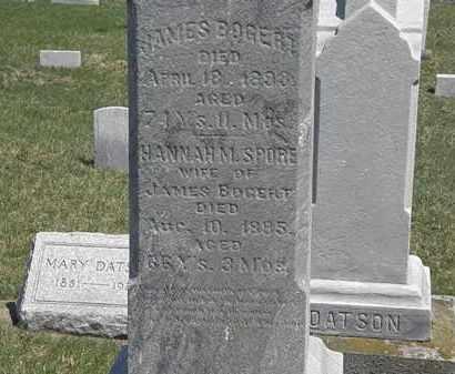 SPORE BOGERT, HANNAH - Erie County, Ohio | HANNAH SPORE BOGERT - Ohio Gravestone Photos