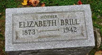 BRILL, ELIZABETH - Erie County, Ohio | ELIZABETH BRILL - Ohio Gravestone Photos