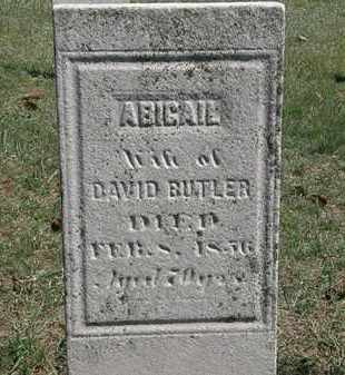 BUTLER, DAVID - Erie County, Ohio | DAVID BUTLER - Ohio Gravestone Photos