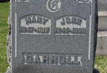 CARROLL, JOHN - Erie County, Ohio | JOHN CARROLL - Ohio Gravestone Photos