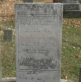 CARTER, ABAGAIL - Erie County, Ohio | ABAGAIL CARTER - Ohio Gravestone Photos