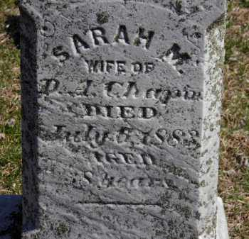 CHAPIN, SARAH M. - Erie County, Ohio | SARAH M. CHAPIN - Ohio Gravestone Photos