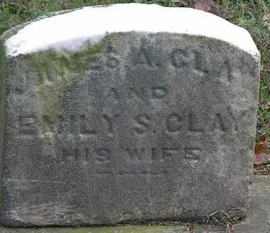 CLAY, EMILY S. - Erie County, Ohio | EMILY S. CLAY - Ohio Gravestone Photos