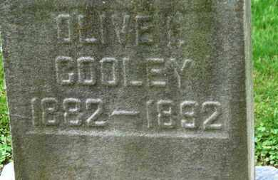 COOLEY, OLIVE I. - Erie County, Ohio | OLIVE I. COOLEY - Ohio Gravestone Photos