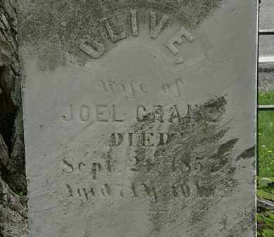 CRANE, OLIVE - Erie County, Ohio | OLIVE CRANE - Ohio Gravestone Photos