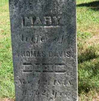 DAVIS, THOMAS - Erie County, Ohio | THOMAS DAVIS - Ohio Gravestone Photos