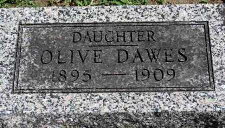 DAWES, OLIVE - Erie County, Ohio | OLIVE DAWES - Ohio Gravestone Photos