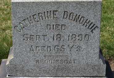 DONOHUE, CATHERINE - Erie County, Ohio | CATHERINE DONOHUE - Ohio Gravestone Photos