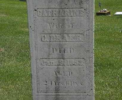 DRAKE, CATHARINE - Erie County, Ohio | CATHARINE DRAKE - Ohio Gravestone Photos