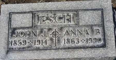 ESCH, ANNA B. - Erie County, Ohio | ANNA B. ESCH - Ohio Gravestone Photos