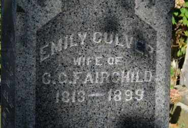 CULVER FAIRCHILD, EMILY - Erie County, Ohio | EMILY CULVER FAIRCHILD - Ohio Gravestone Photos
