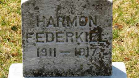 FEDERKIEL, HARMON - Erie County, Ohio | HARMON FEDERKIEL - Ohio Gravestone Photos