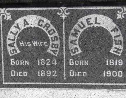 FISH, SAMUEL - Erie County, Ohio | SAMUEL FISH - Ohio Gravestone Photos