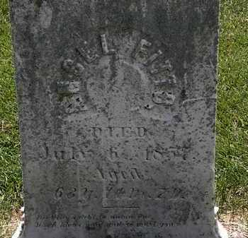 FITTS, ANSEL - Erie County, Ohio | ANSEL FITTS - Ohio Gravestone Photos