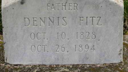 FITZ, DENNIS - Erie County, Ohio | DENNIS FITZ - Ohio Gravestone Photos